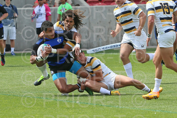 Brigham Young University Rugby 2015 Penn Mutual Varsity Cup Championship