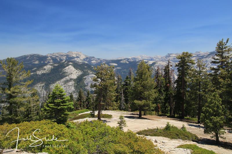 Yosemite 2018 -48.jpg