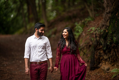 Jas & Devraj's Engagement