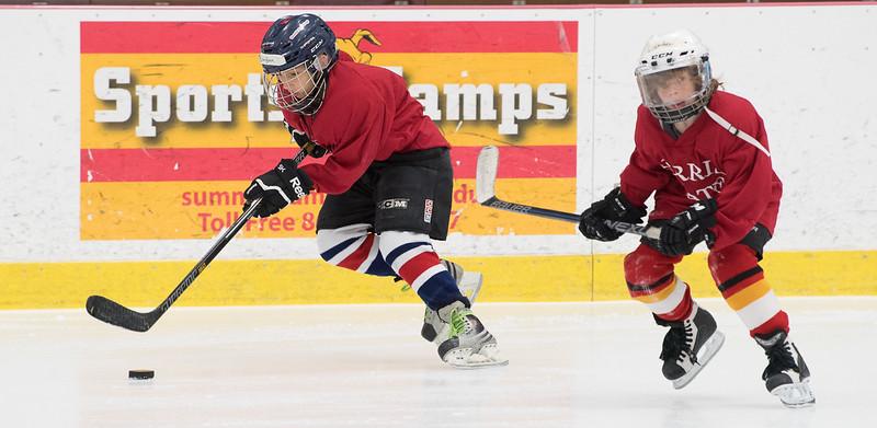 2017 Hockey Summer Camp