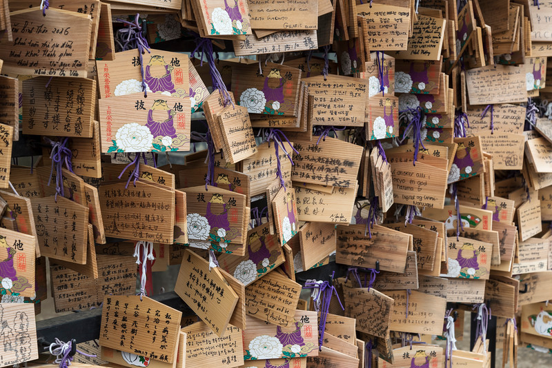 Wooden wish plaques (Ema) at Toshogu Shrine, Ueno Park, Tokyo, Japan