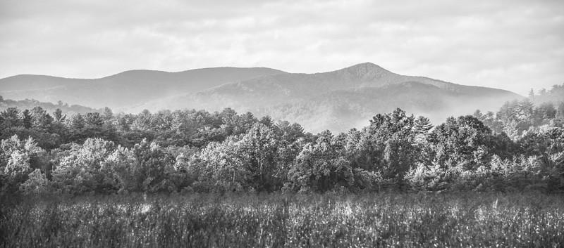 Smoky Mountains 319