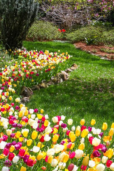 2021.4.1 -  Concord Memorial Garden