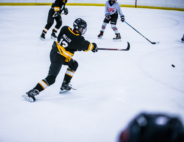 Bruins2-348.jpg