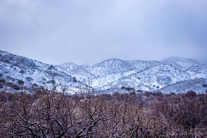 20210124-oracle-snow-018.jpg