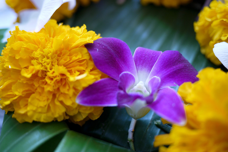 Delicate flowers adorn the krathongs during Loy Krathong in Chiang Mai, Thailand