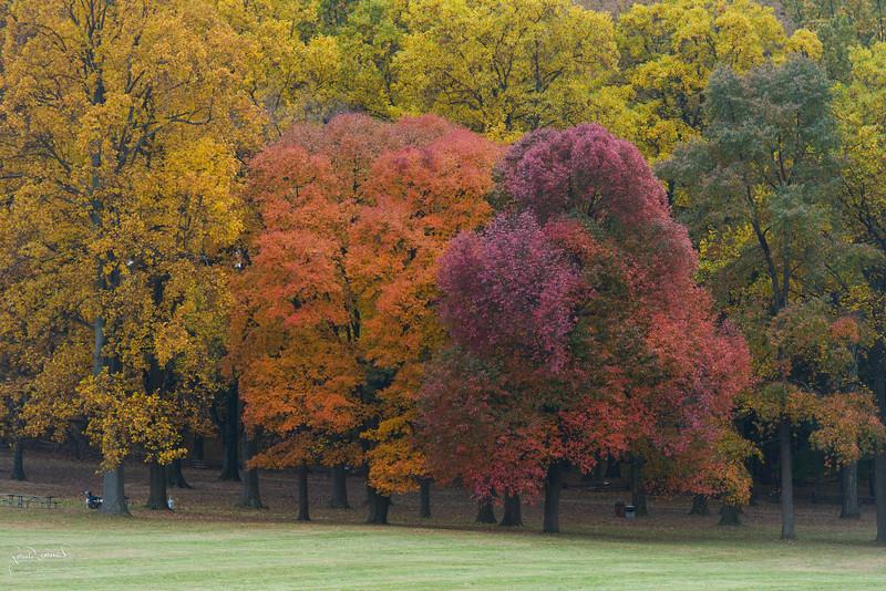 2012-10-23 at 09-40-39.jpg