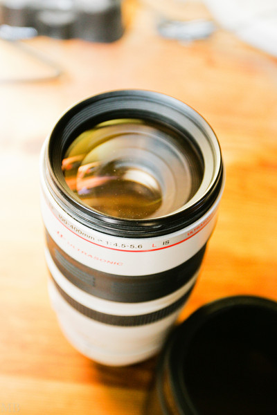 Canon 100-400L IS for sale