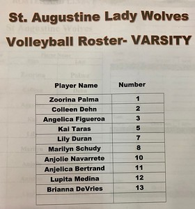 2019 girls volleyball st augustine gregory school