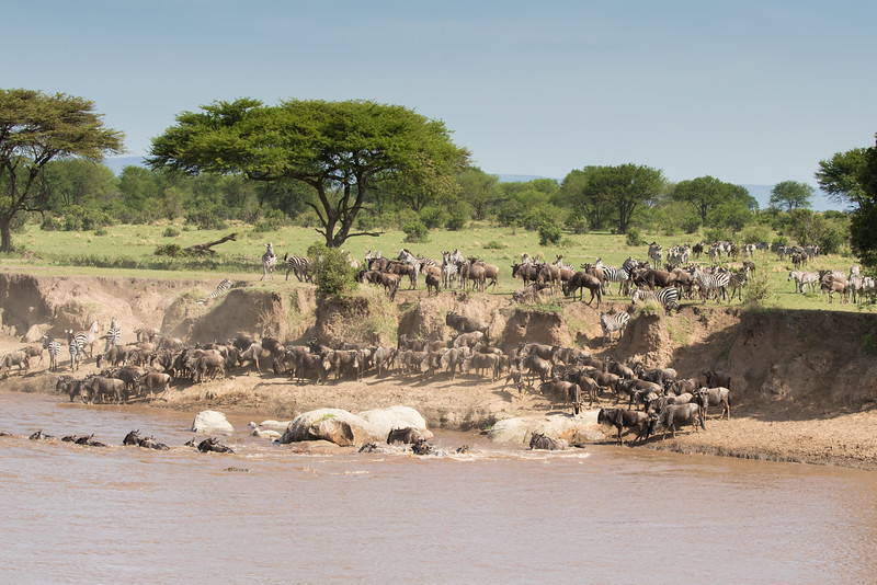 Africa  - 101116- 613.jpg
