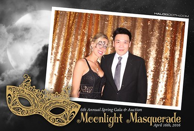VMS PA Annual Spring Gala & Auction - Moonlight Masquerade