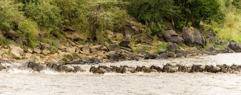 Kenya 2015-05568.jpg