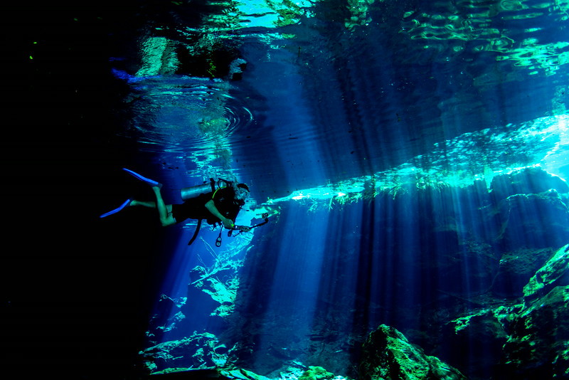 2014 Whale Shark - Cave Adventure-112.jpg