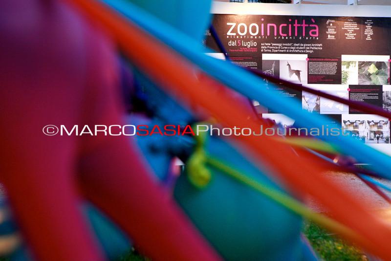 0096-zooart-01-2012.jpg