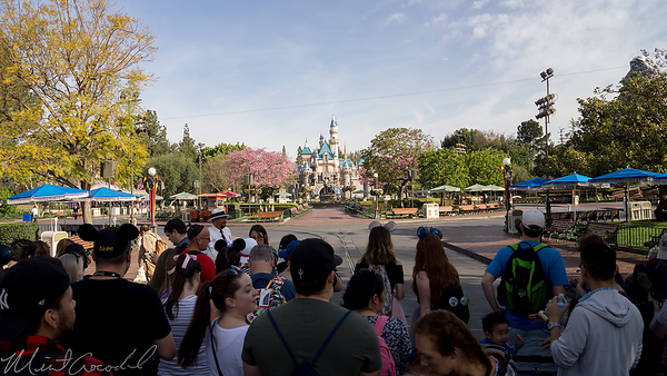 Disneyland Resort, Disneyland, Main Street USA, Rope, Drop