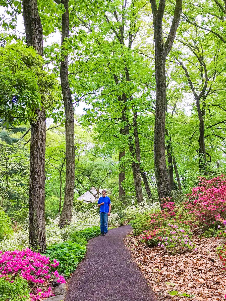 公园漫步,小路边的色彩