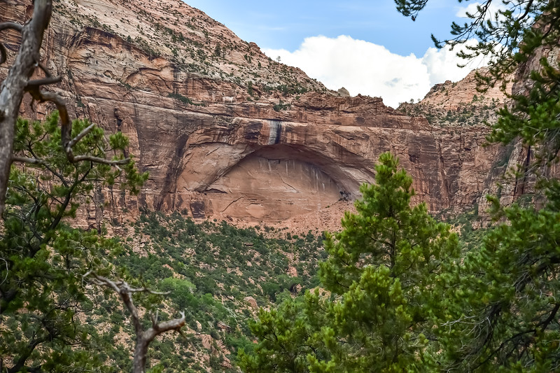 2019 Grand Canyon-100.jpg