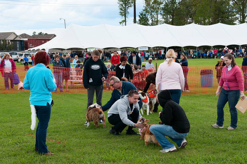 2011 Bark in the Park-148.jpg