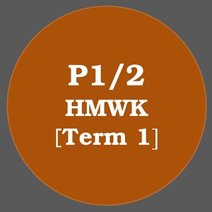 P1/2 HMWK T1