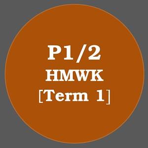 2019 P_1/2 Term_1
