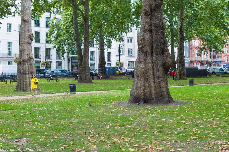 London September 2014 004.jpg