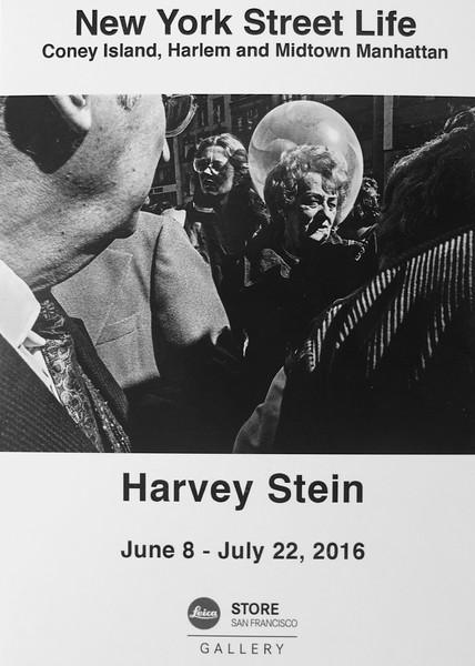 San Francisco Field Trip, H. Stein Show