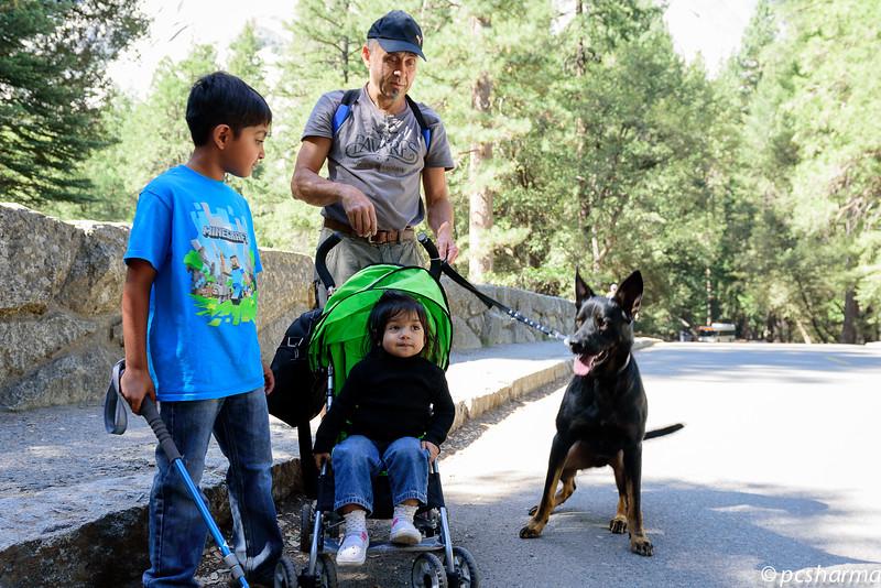 Rana_Yosemite_2015_Camping-63.jpg
