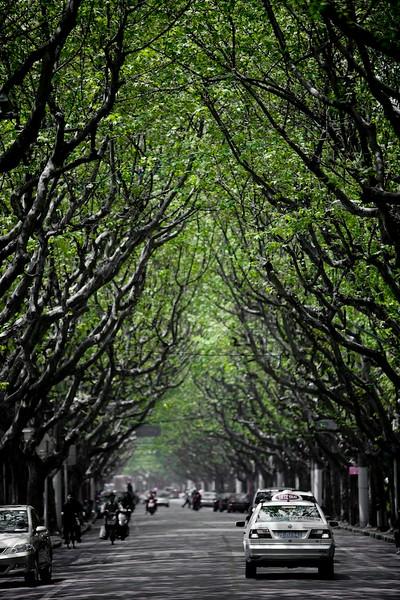 Just Shanghai