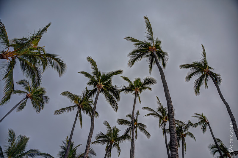 Stormy Evening at ʻAnaehoʻomalu Beach