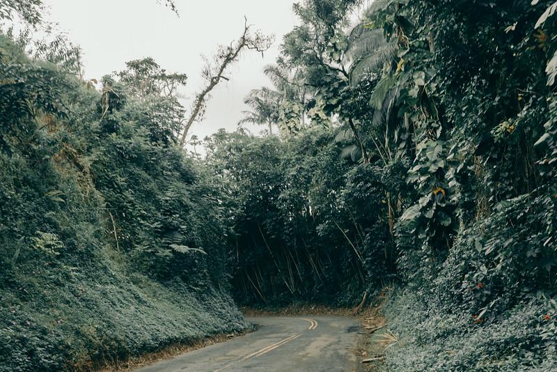Hawaii20-373.jpg