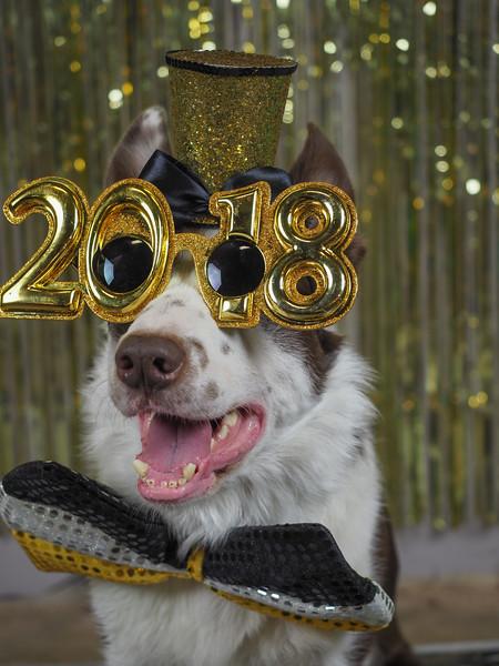Renegade 2018 Happy New Year