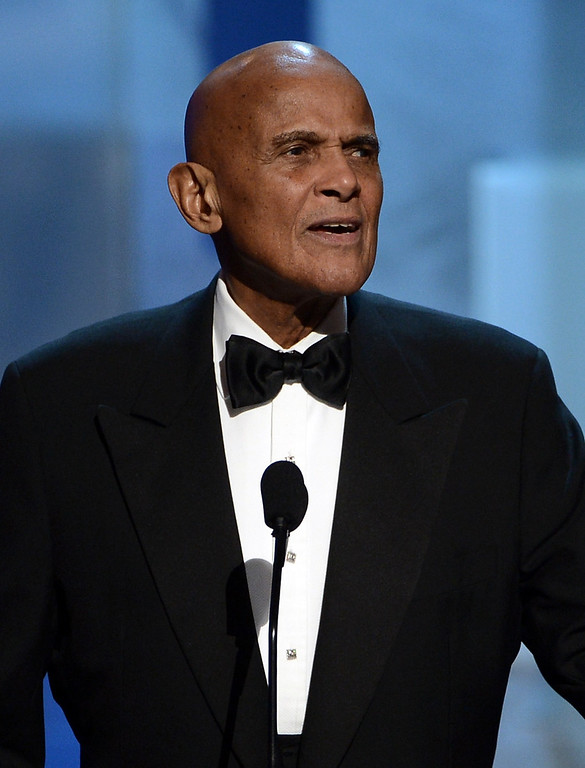 . LOS ANGELES, CA - FEBRUARY 01:  Singer Harry Belafonte, Spingarn Medal honoree, speaks onstage during the 44th NAACP Image Awards at The Shrine Auditorium on February 1, 2013 in Los Angeles, California.  (Photo by Kevin Winter/Getty Images for NAACP Image Awards)