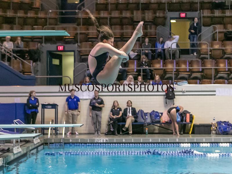 Swimming-diving vs Seton Hall_1229.jpg