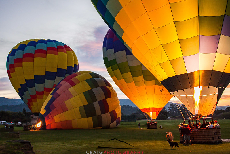 Balloons over Napa Valley #5