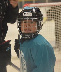 2016-04-03 Mason Hockey