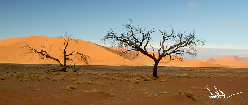 Nambiia-1-2.jpg