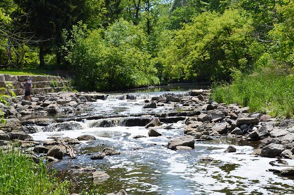 Toronto's Highland Creek Park Trail (June 2017)