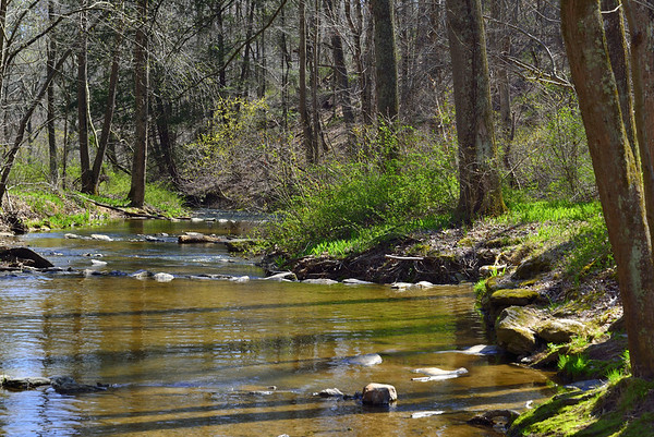 Kilgore Falls - Falling Branch