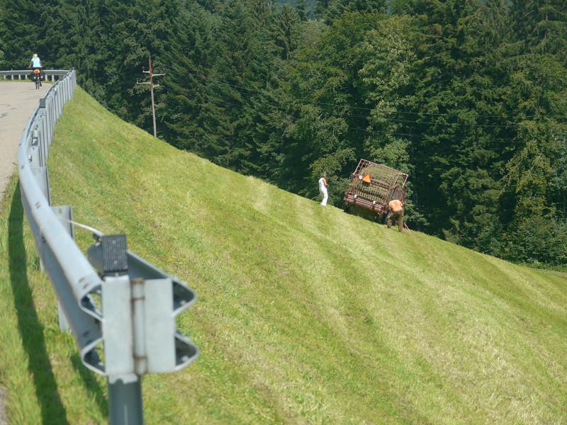 @RobAng 2012 / Rüeterswil, Gebertingen, Kanton St. Gallen, CHE, Schweiz, 769 m ü/M, 01.08.2012 15:08:59
