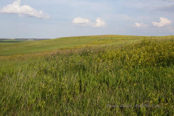 Badlands, South Dakota July 2014