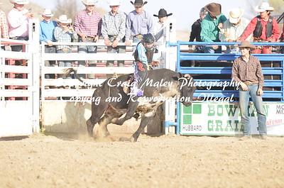 Bulls 05-02-15