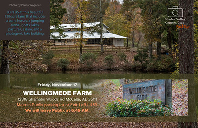 Wellingmede Farm 11-17-2017