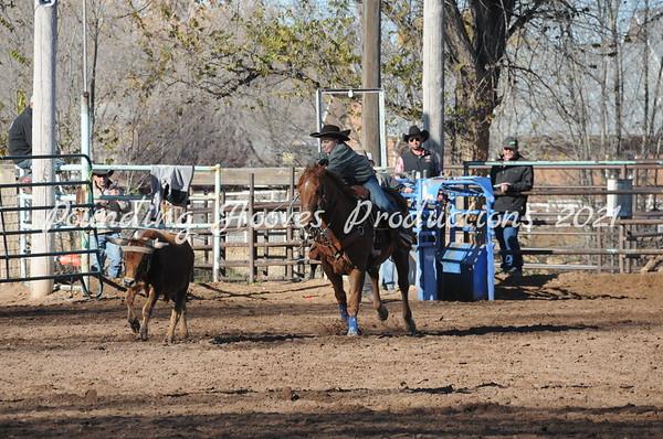11-17-13 10/13 Steer Stopping