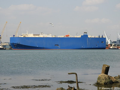 Modern Maritime Shipping NSC-Group