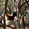 Madagascar 2017 (48)