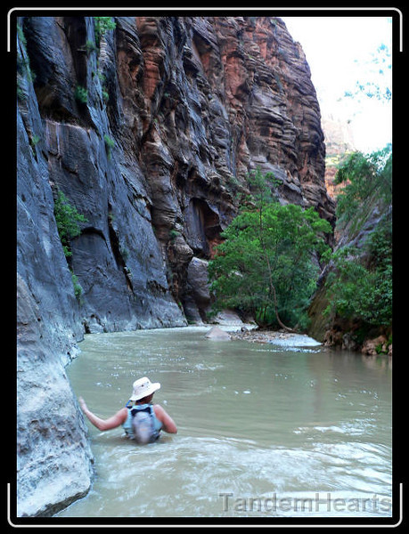 On the last day, we waded up the Virgin River. Because of recent rain, the water was unseasonably deep.