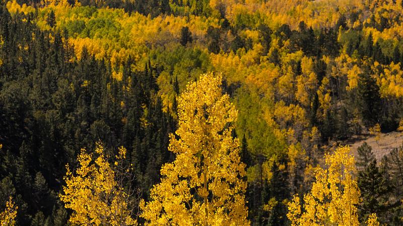 Colorado19_5D4-1149.jpg