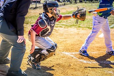 2017 Tigers Baseball