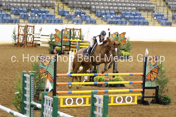 2019 Spring Premiere Horse Show -- Friday -- Coliseum