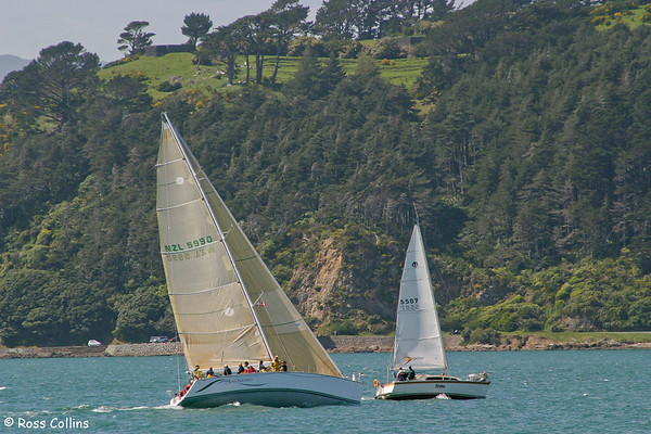 Yachting on Wellington Harbour